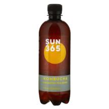 Tējas dzēr. Kombucha Trad. Sun365 BIO 0,5l