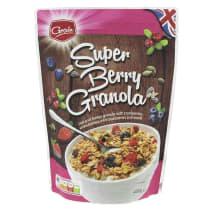 Traškūs dribsniai GRAIN SUPER BERRY, 450 g