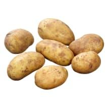 Kartupeļi jaunie 50-70 mm kg