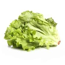 """Salat """"Gentile"""" 1kl, kg"""