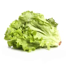 Salāti Gentile 1. šķira kg