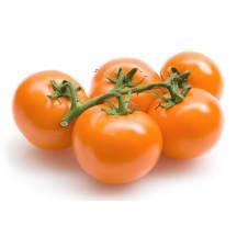 Kobartomat oranz 1kl, kg