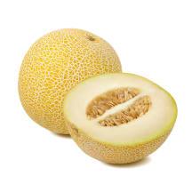 Melone Galia kg