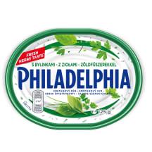 Sūrio gaminys su žolelėmis PHILADELPHIA, 125g