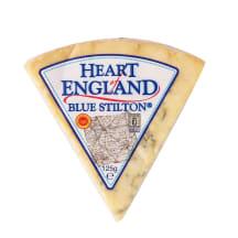 Sūris BLUE STILTON, 48% riebumo, 125g