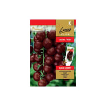 Harilik Tomat Lucia Elite Black Cherry