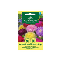 Aedaster American Branching Agronom