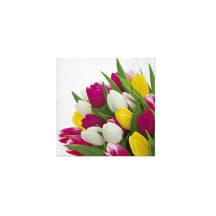 Servetėlės PAW tulpės 33x33cm SS21