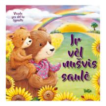 Knyga IR VĖL NUŠVIS SAULĖ