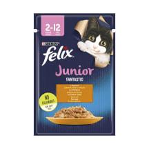 Kiisueine Felix kassipoegadele kana 85g