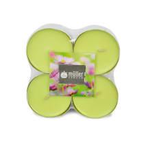 Küünal MULLER lilleaed 8h, 8tk