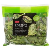 Salātu maisījums Rimi spring 65g