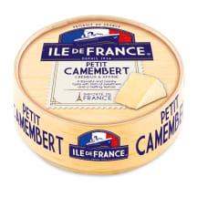 Siers Ile de france petit camembert 125g