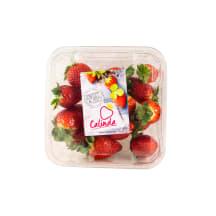 Maasikad 1kl 400g