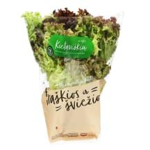 Įvairiaspalvės salotos, 1 vnt