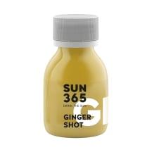 Shot ingveriga SUN365, 60ml