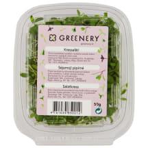 Salatkress 50 g