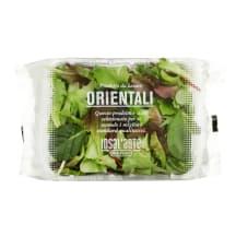 Salotų mišinys ORIENTAL, 100 g