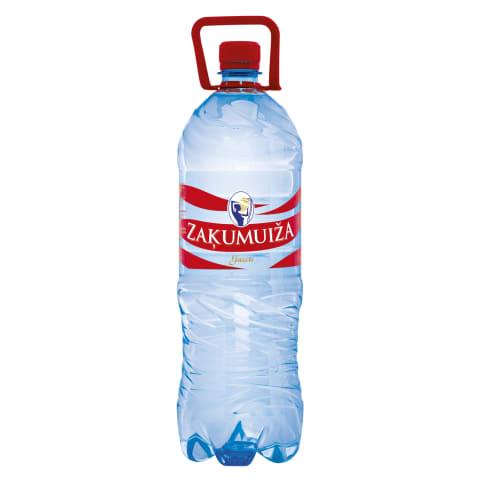 Dzeramais ūdens Zaķumuiža gāzēts 2l