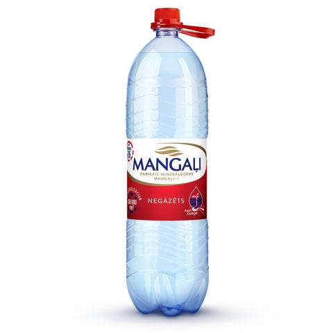 Minerālūdens Mangaļi-1 dabīgs negāzēts 2l