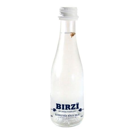Dzirk. bērzu sula Birzī ar upeņu pumpuru 0,2l