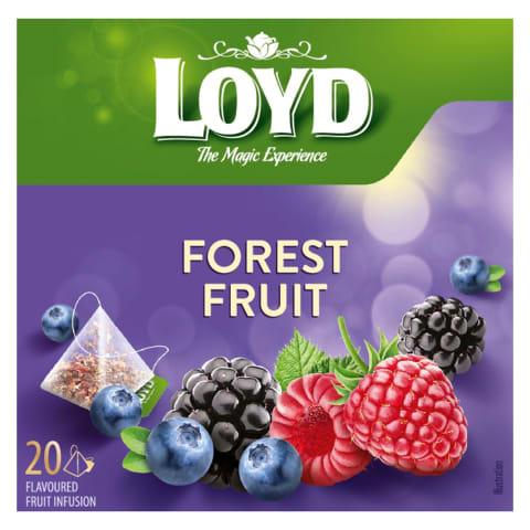 Miško uogų vaisinė arbata LOYD, 20 pak.