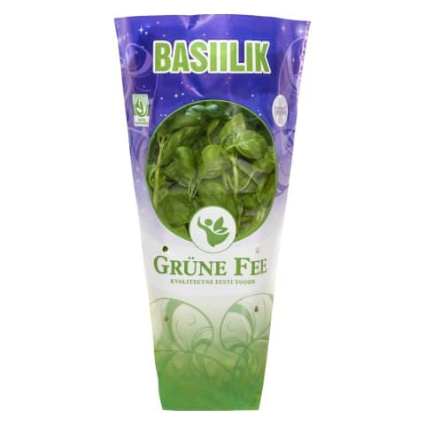 Basiilik potis Grüne Fee