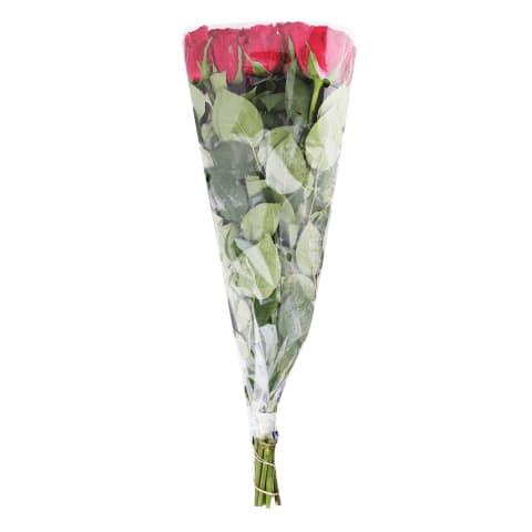 Rožu pušķis garais 50 cm 9 gab