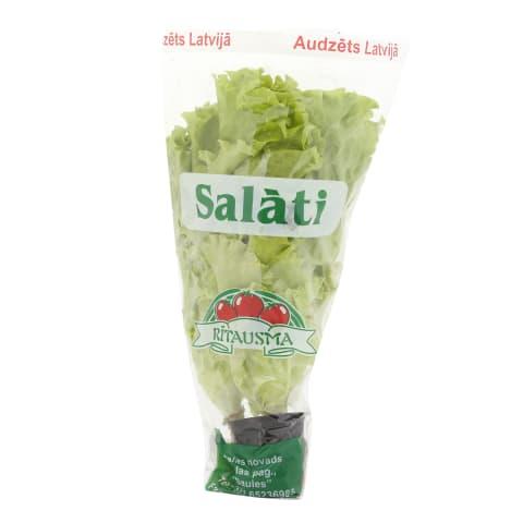 Salāti podiņā gab