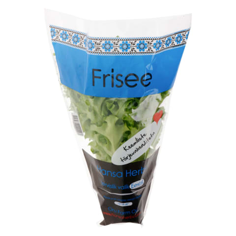 Salat frisee Hansa Herbs