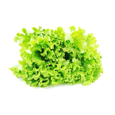 Salāti Latvijas 2. šķira kg