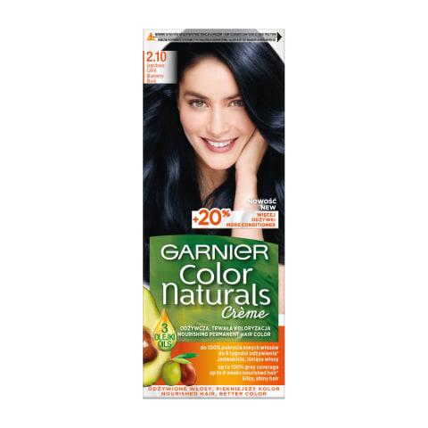 Matu krāsa Garniet color naturals 2.1