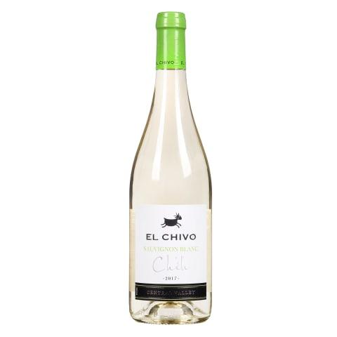 Baltas sausas vynas EL CHIVO SAUVIGNON, 0,75l