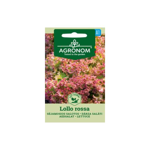 Dārza salāti Lollo rossa Agronom