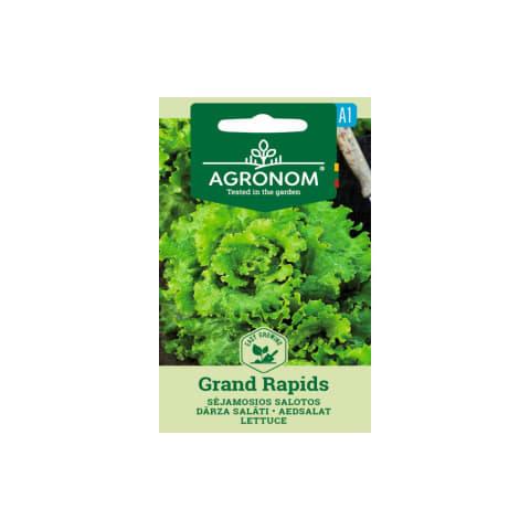Dārza salāti Grand rapids Agronom