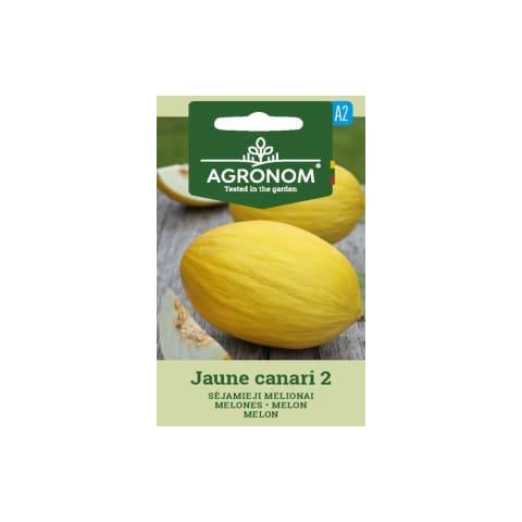 Melones Jaune canari 2 Agronom