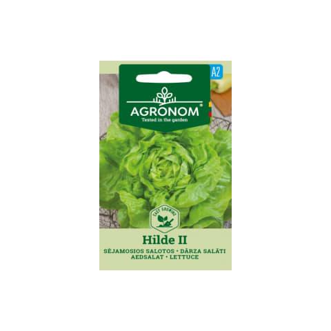 Dārza salāti Hilde Ii Agronom