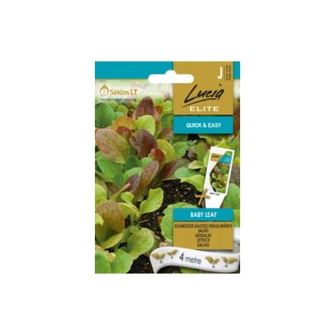 Dārza Salāti Baby Leaf