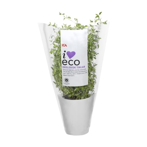 Tüümian potis I Love Eco