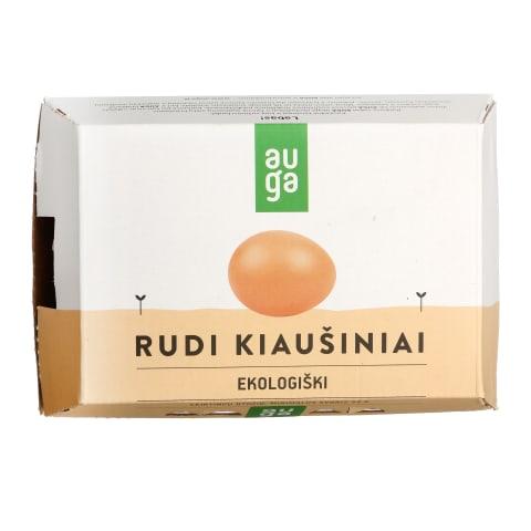 AUGA EKO kiaušiniai, A kl., 6 vnt., M