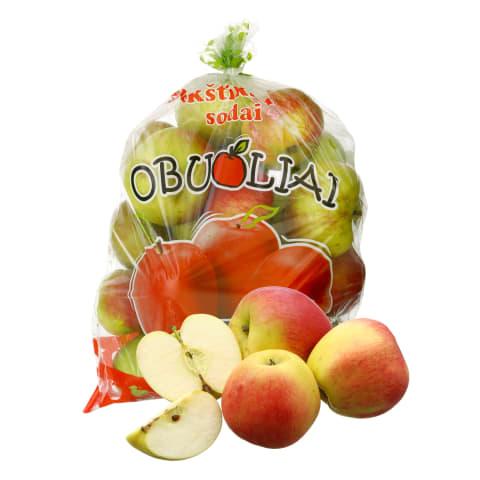 Fasuoti lietuviški obuoliai LIGOL, 1 kg