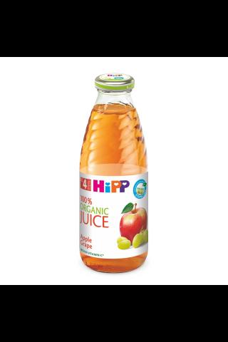 Sula Hipp bio ābolu - vīnogu, 500ml