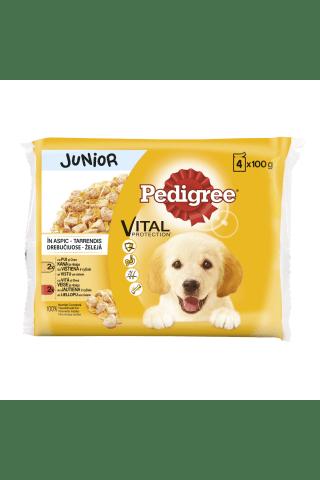 Konservuotas šunų ėdalas PEDIGREE JUNIOR, 4 vnt x 100 g
