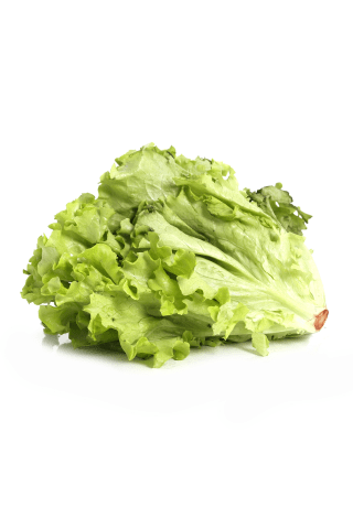 Salāti Gentile kg
