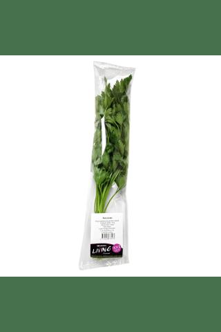 Fasuotos petražolės, 50 g
