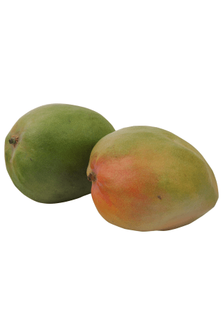 Mango (cal. 7), gab