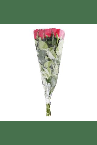 Rožu pušķis garais 50cm, 9 gab.