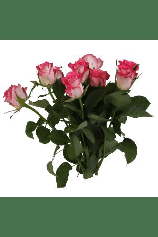 Rožu pušķis 40cm, 9 gab., RIMI