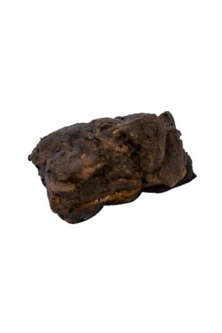 Cūkas cauraudzis senču gaļa