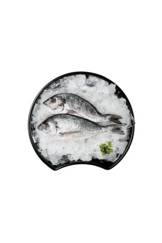 Jūraskarūsa (dorada) neķidāta ar galvu/6kg/